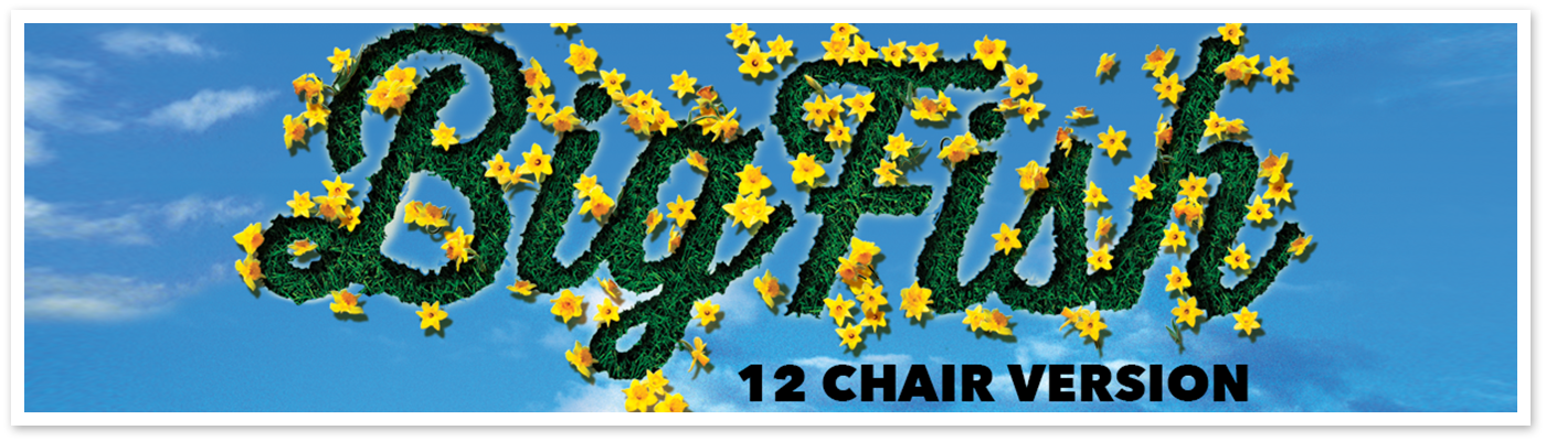 Big Fish - 12 Chair Version Logo